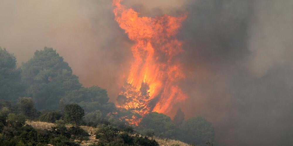 Σε εξέλιξη πυρκαγιές σε Μαραθώνα, Ασπρόπυργο και Κεφαλονιά
